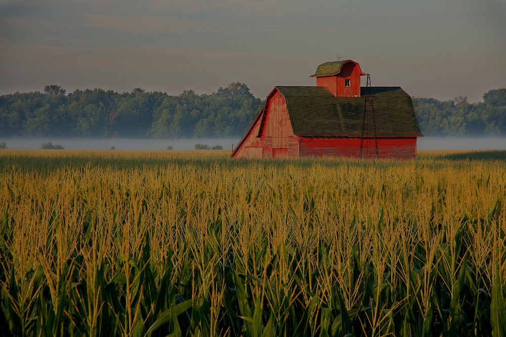 farm and crop insurance in Orland Park STATE | Sidebar Insurance Solutions